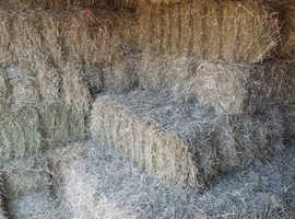 Hay Bales for sale CV13