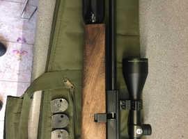 BSA S10 PCP & SMK PP700W