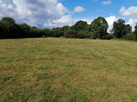 Beautiful Field to rent in the garden of England