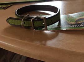 Brand new job lot of small dog collars