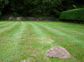Mole Management, Pest Control with a greener approach