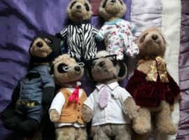 Meerkat soft toy collection
