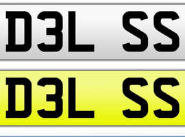 DEL S / DELS / DELSS Personalised plate