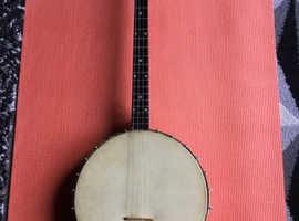 Savana Tenor Banjo