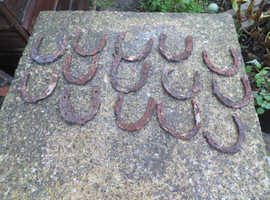 ANTIQUE SMALL VICTORIAN HORSESHOES (14)