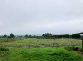 3 STABLES/PADDOCKS FOR HIRE