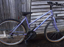 Townsend Sensation Mountain Bike - needs maintenance  as not used