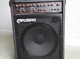 Amplifier brilliant sound. Fill the hall.