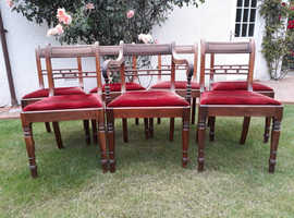 Set of 7 Antique Dining Chairs including 1 Carver Chair. Available to pick up from 28/08/2019