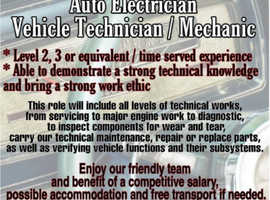 We are in need of Vehicle Technician, Mechanic or Auto electrician