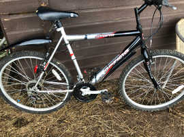 Mountain bike storm optima