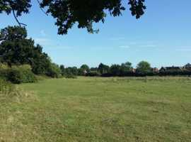 Grazing for goats or sheep in Marden