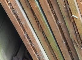 Fence panels USED
