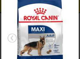 Royal Canin Maxi Adult dog food for large dogs (26 - 45kg) aged from 15 or 18 months