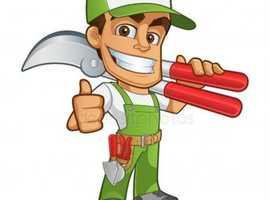 Handyman and gardener available