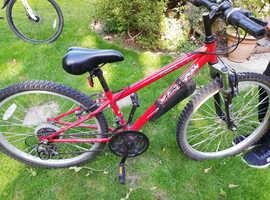 Apollo kids mountain bike