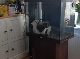 Juwel Fish tank and cupboard with accessories