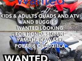 Quad kids & adults wanted?