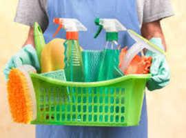 Domestic cleaner, housekeeping, domestic helper