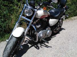 Harley Davidson Sportster Superlow XL883L