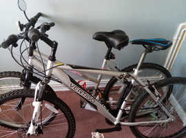 Mens and womans bike