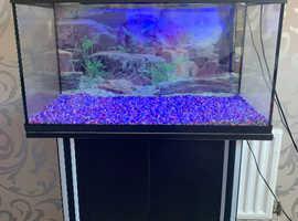 Aquael fish tank with stand