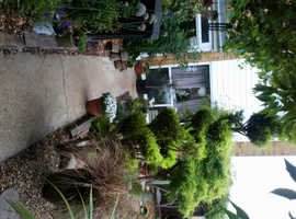 2 bed house Portsmouth offerred