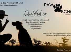 PAW SCHOOL Dog Training