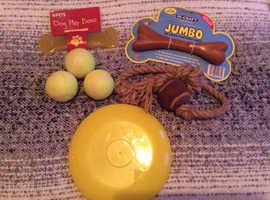 Bundle of dog toys