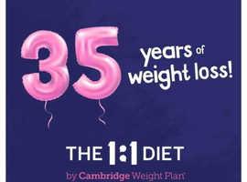 Alan's 1:1diet by cambridge weight plan