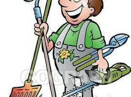 My name is David. Are you in need of jobs need doing like gardening,painting,general cleaning or even need you dog walking. I am more than happy to he