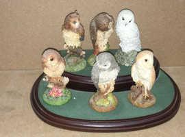 6 x Royal Doulton Owls On a wooden plinth - full set-