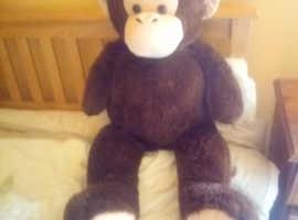 Lovely big brown monkey