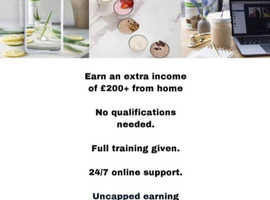 Want to earn up to £500-£1000 per month by January working part-time?