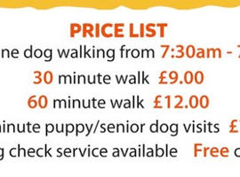 The Lincoln Dogfather is a fully insured dog walking and visiting service.