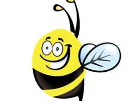 Info BeeHive
