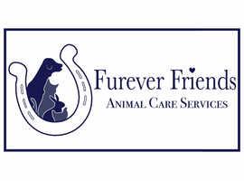 Furever Friends animal care service