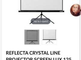 "Projector screen 50"""