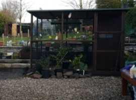 Aviary for sale around 2meter x 3meter