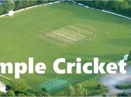 Cricket Scorers and Umpires Wanted at Whimple Cricket Club