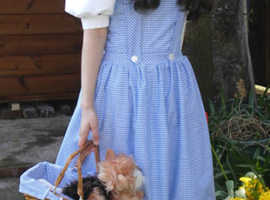 Dorothy wizard of oz small costume homemade + basket/wig & bows for shoes
