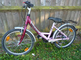 GIRLS ARCONA 3 SPEED BIKE WITH SHIMANO NEXUS HUB