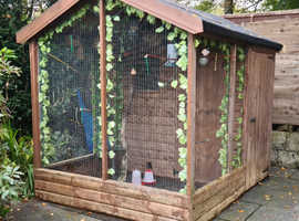 Aviary with birds and accessories