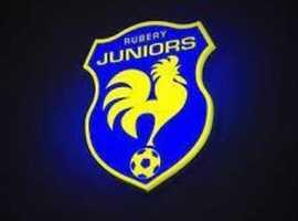 u12 Football Players wanted.     2 Midfielders.  RSM & CM.  Current School year 6.