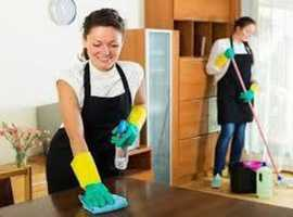 Professional cleaner lady , domestic, house cleaner