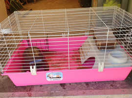 Pink Guinea Pig Cage with Accessories