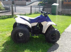 Quad bikes Motorcycles For Sale in York | Freeads Motors in
