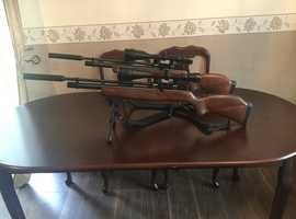 Gamo in Exeter | Hunting, Shooting & Sporting Equipment For