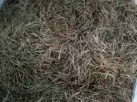 Organically grown meadow hay