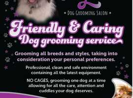 Local, Friendly and Caring Dog Grooming Services